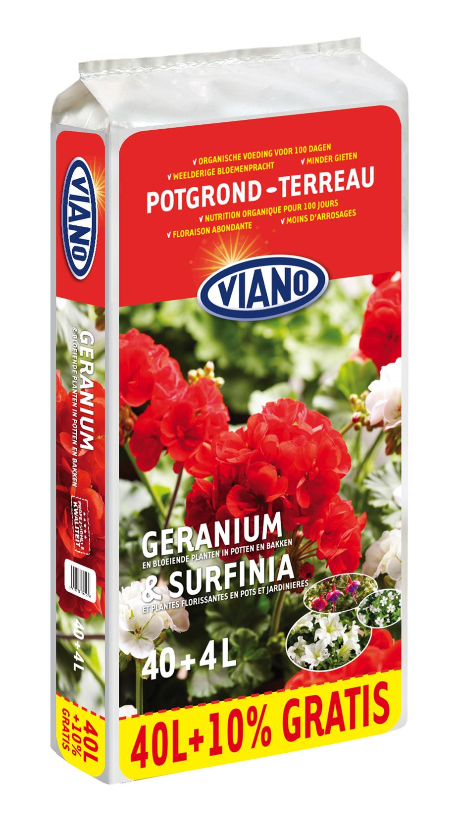 Geranium-surfinea-potgrond-40L4L-gratis