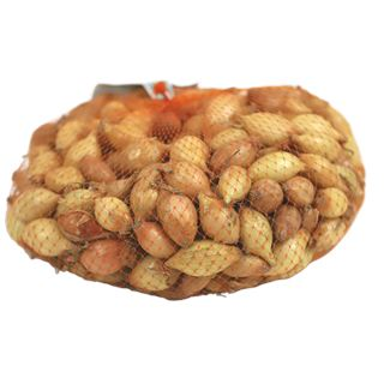 Plantajuin-Jaune-paille-des-vertues-netje-1kg-14-21mm