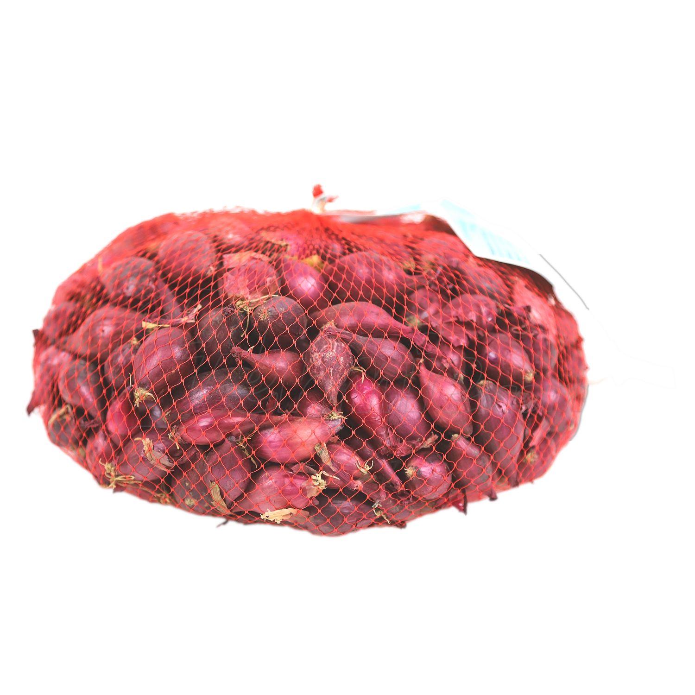 Plantajuin-Red-Karmen-Rood-netje-1kg-14-21mm