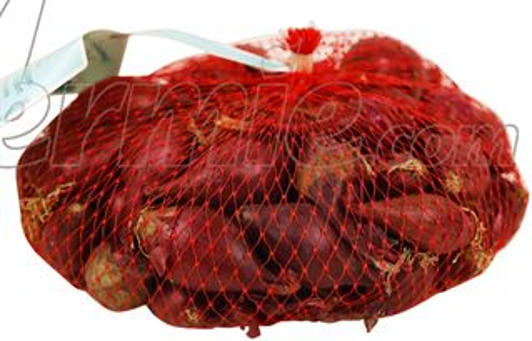 Plantajuin-Red-Karmen-Rood-netje-250gr-14-21mm
