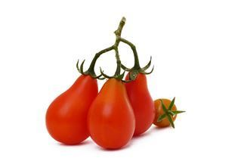 Plantenfiche-Lycopersicon-esculentum-l-var-red-pear-Tomaat-cherry-peervormig-