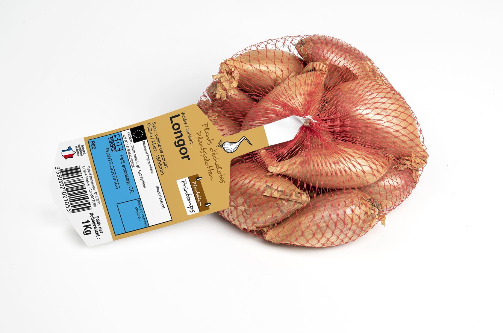 Plantsjalot-Longor-netje-1kg-Verbeterde-Cuisse-de-poulet-