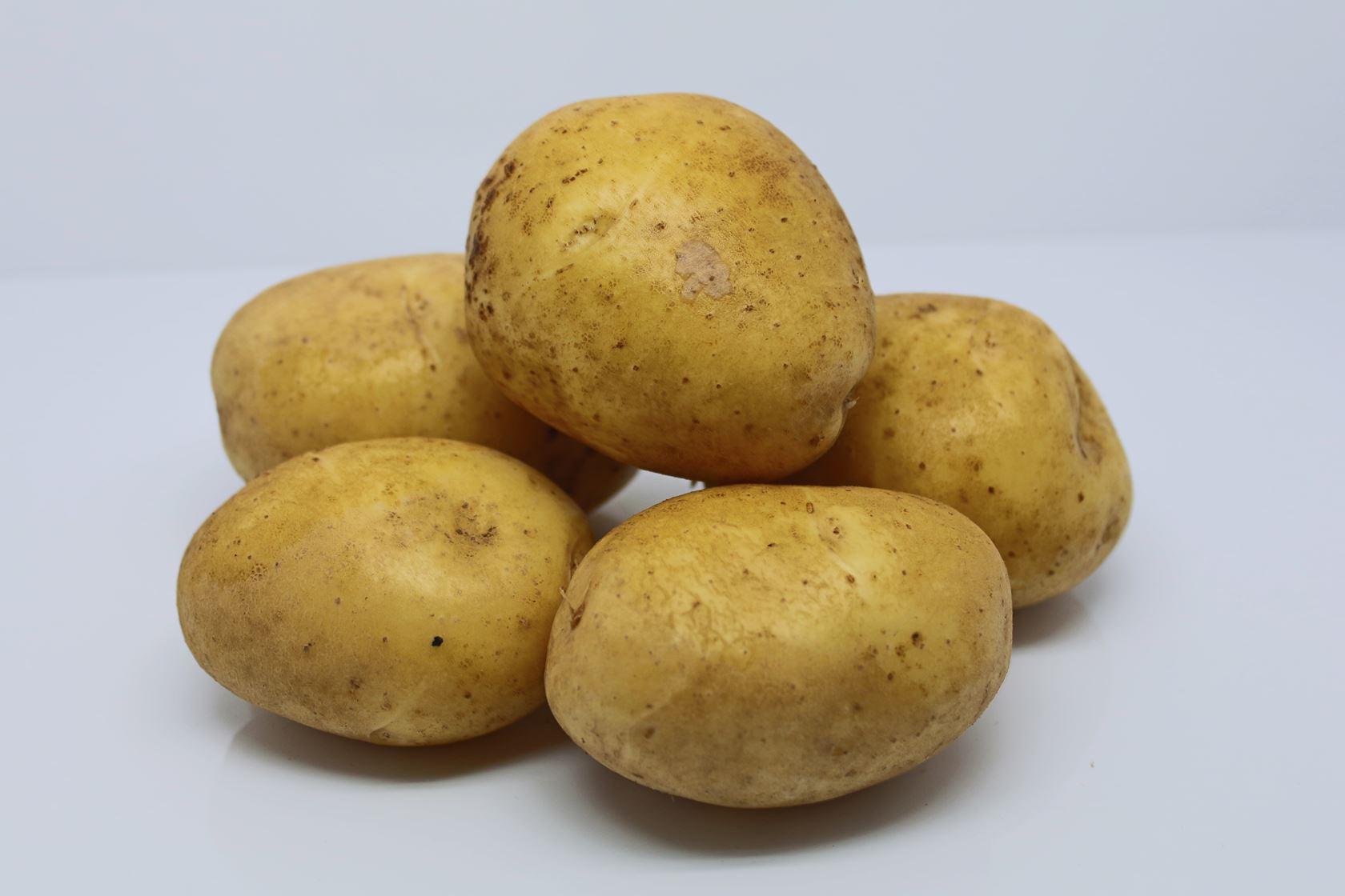 Pootaardappel-Agria-zakje-1-5kg-28-35-Frankrijk-