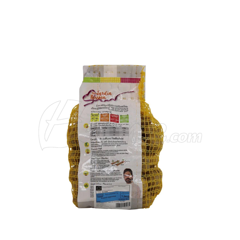 Pootaardappel-Berber-zakje-1-5kg-28-35-Nederland-