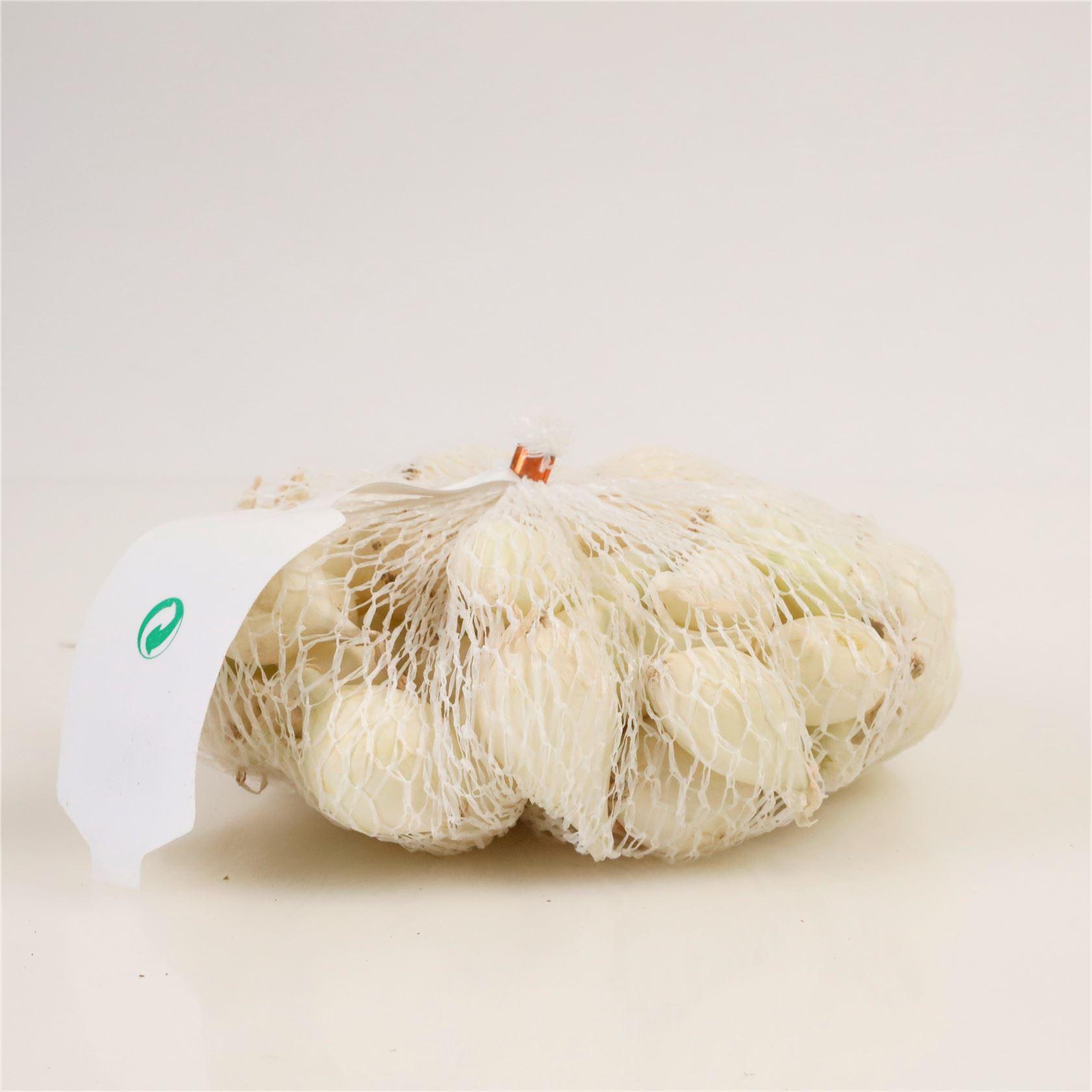 Winter-plantui-Snowball-wit-netje-van-250gram