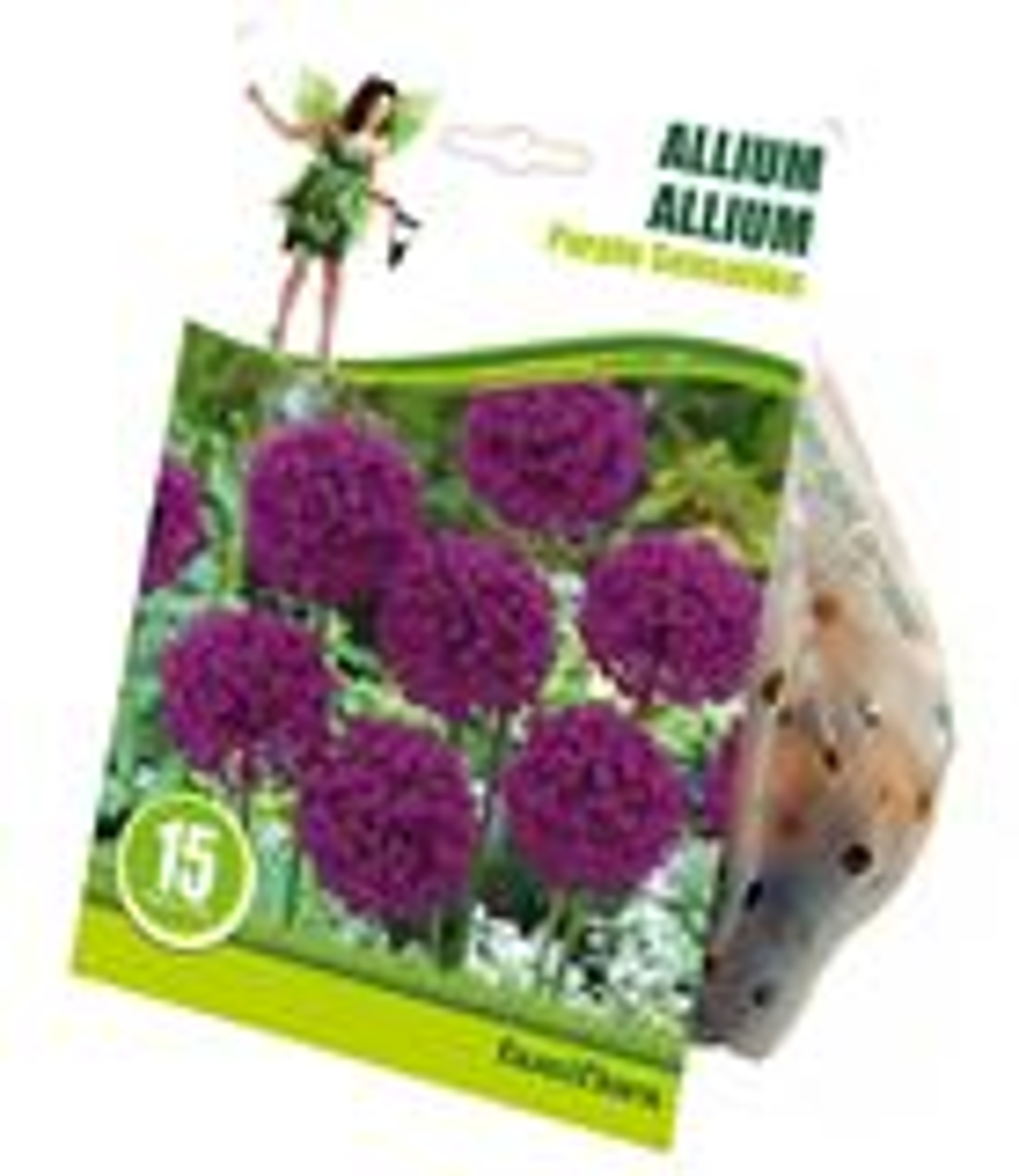 Allium 'purple sensation' 15 st. 10/12