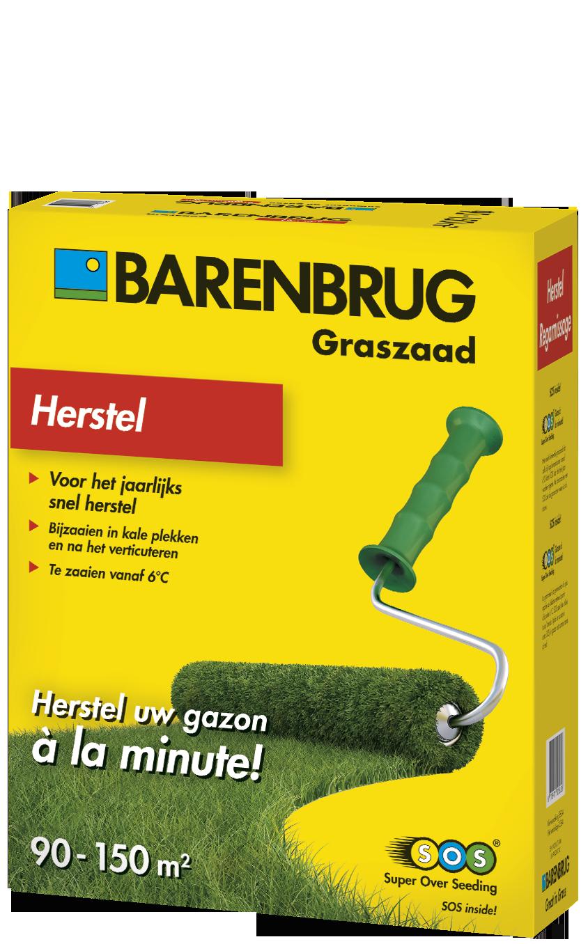 Herstelgazon graszaad - 3kg