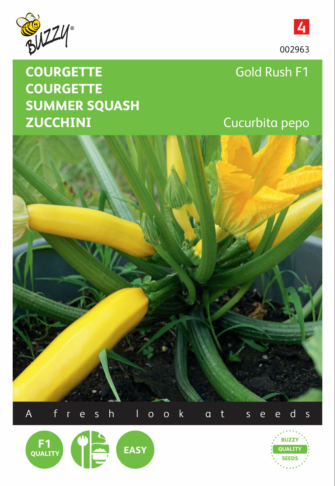 Buzzy-Courgette-Gold-Rush-F1