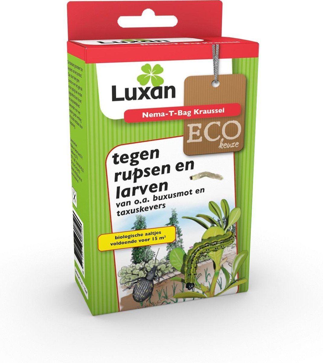 Luxan Nematoden taxuskever, buxusmot kraussei 1 stuk (max 15 m²)