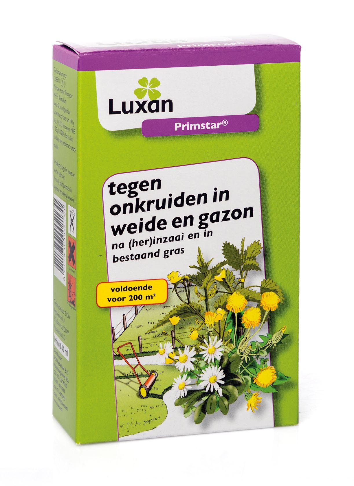 Luxan primstar - 40 ml - tegen onkruiden in weide en gazon