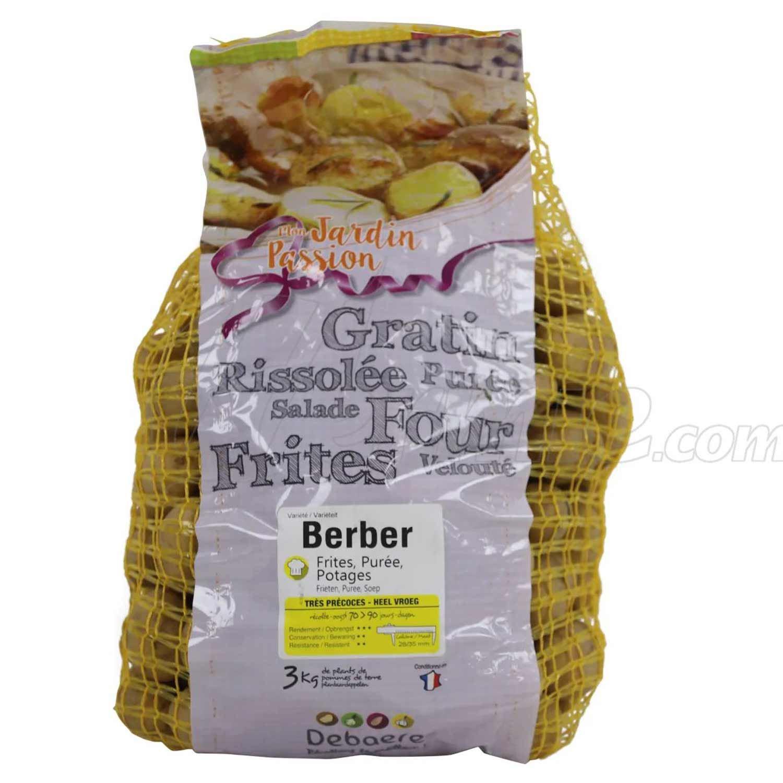 Pootaardappel-Berber-zakje-3kg-28-35-Nederland-