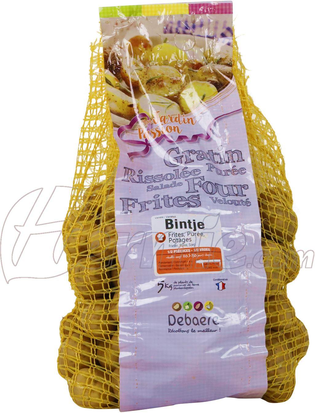 Pootaardappel Bintje zak 5kg - 35/45 (Frankrijk)