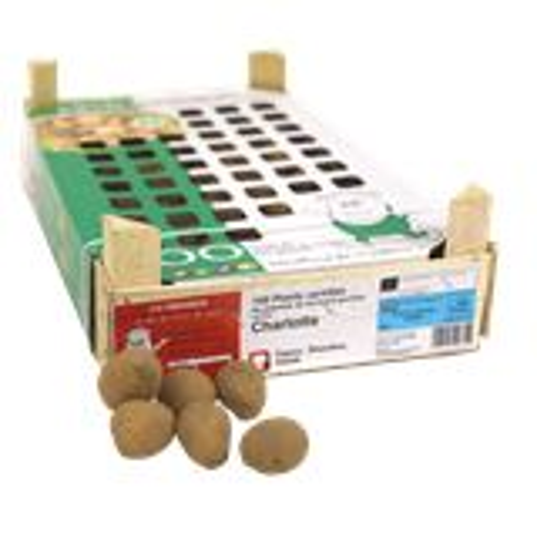 Pootaardappel-Charlotte-kistje-100-stuks-25-32-Frankrijk-