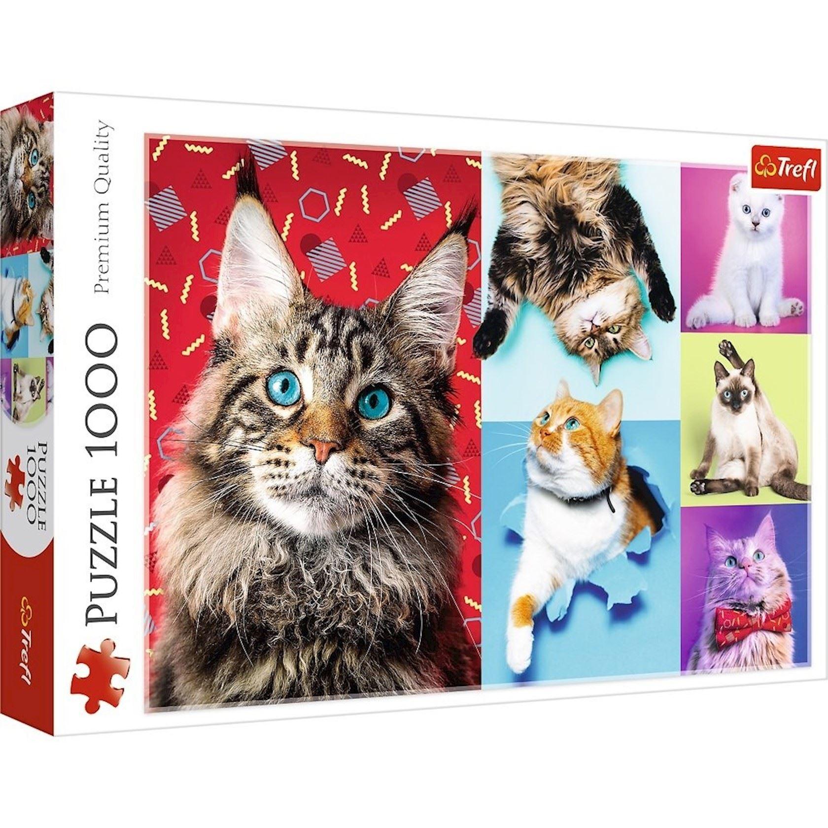 Puzzel Trefl 1000 stuks - Vrolijke katten