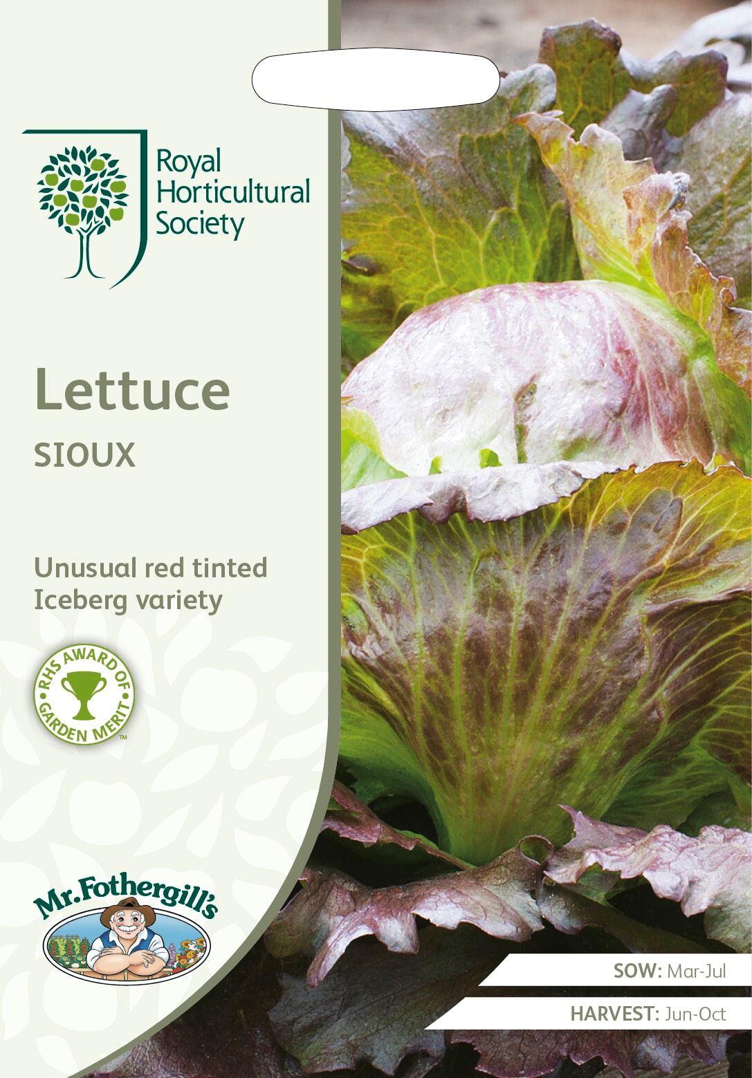 RHS Lettuce Sioux