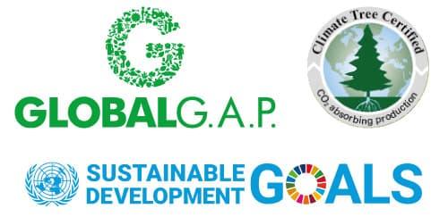 Ecologisch verantwoorde bosbouw van echte levende Nordmann kerstbomen Hermie online webshop sustainable development goals climate tree certified global gap