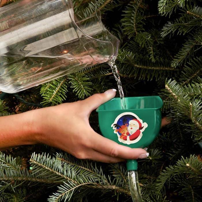 levende echte kerstboom water geven onderhoud hermie