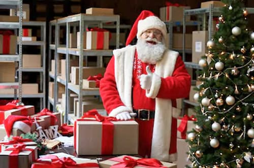 levering levende echte nordmann kerstboom kerstman hermie webshop online